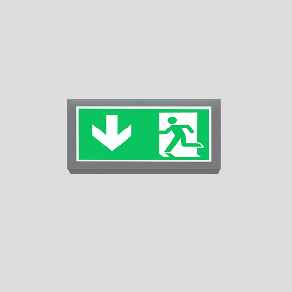 LEDEX Surface Mounted White Exit Sign